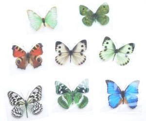 Schmetterlinge Magnet realistisch Wandtattoo Wandsticker Wanddeko VE200